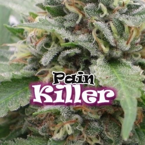 Dr Underground / Pain Killer