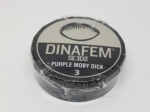 Purple Moby Dick