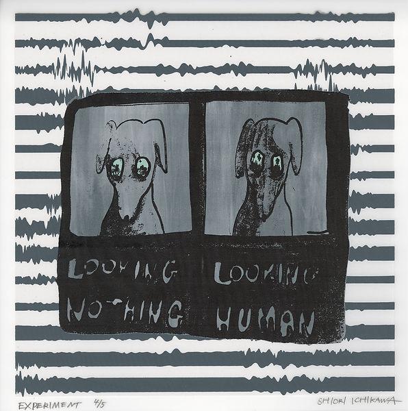 IS018 35 実験 -人間を見るときの表情を実験された犬- 2017 ed4