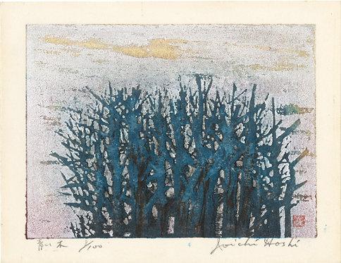 星 襄一 /青い木