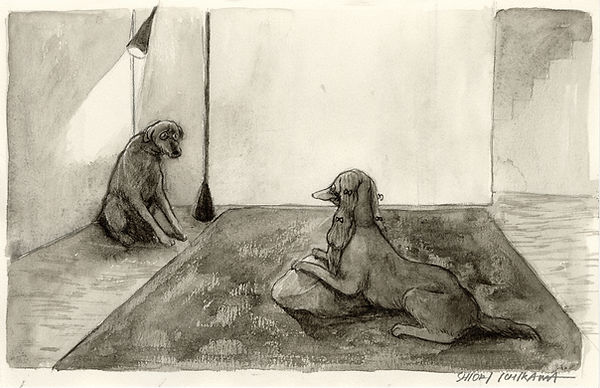 IS026 30 市川詩織 鑑賞用に雑種犬を飼う金持ちの犬 2020.jpg