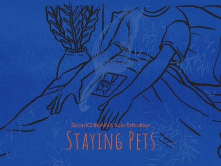 市川詩織 個展「Staying Pets」が開催されます