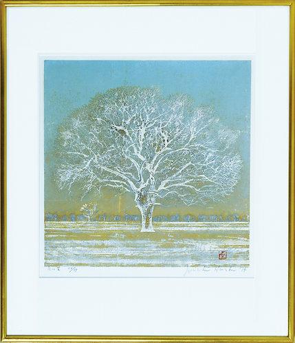 星 襄一 /白い木