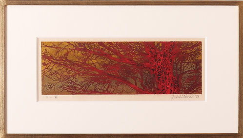 星 襄一 / 赤い枝