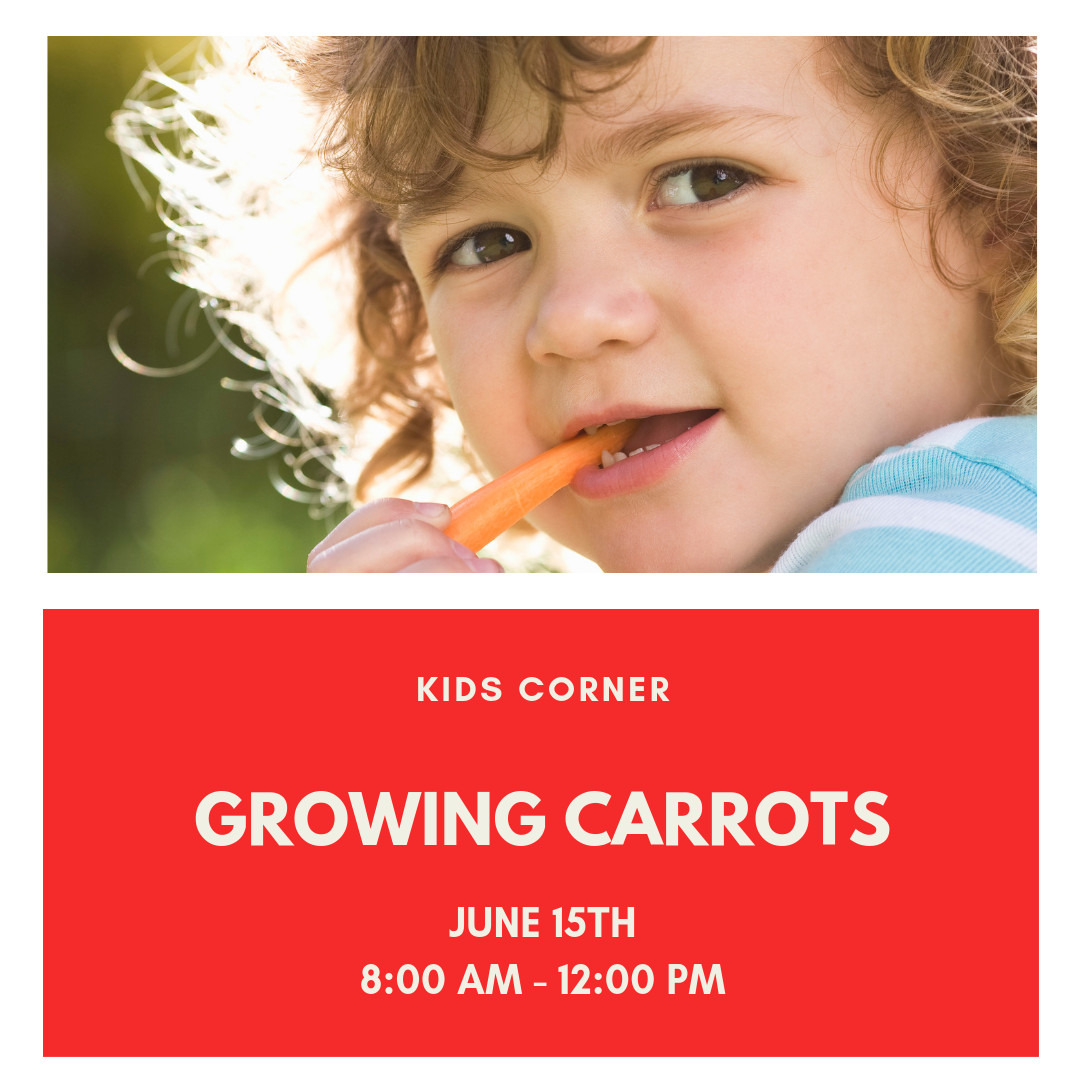 HGH Carrot Planting png