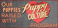 puppyculture.png