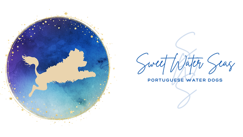 SWSeasFBcover (1).png