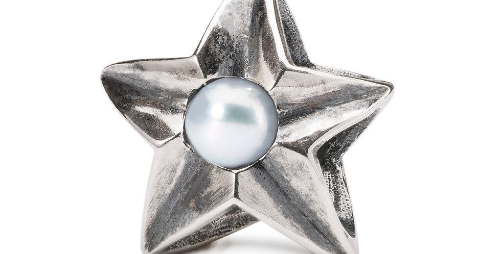 Cancer Star Bead
