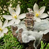 Remi Robot Organic.jpeg