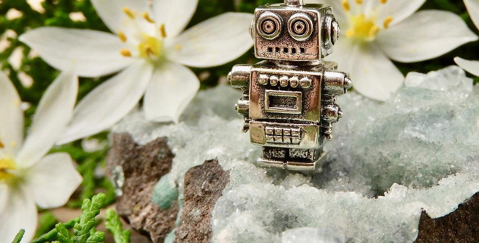 Remi Robot