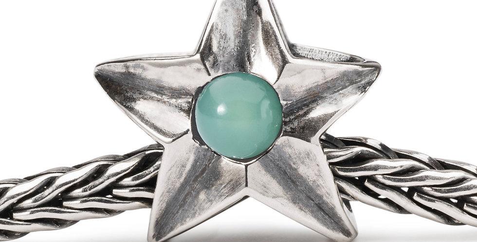 Taurus Star Bead