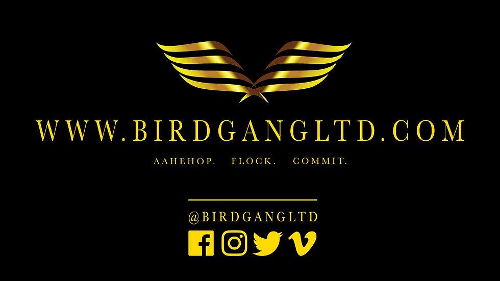 Online BirdGang Ltd Dance Class Recording