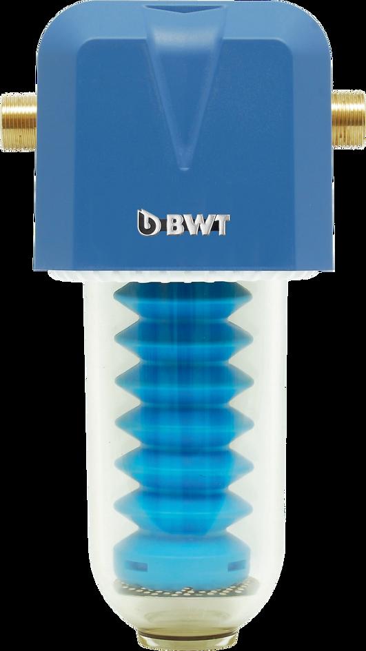 11_bwt_immuno 181.png