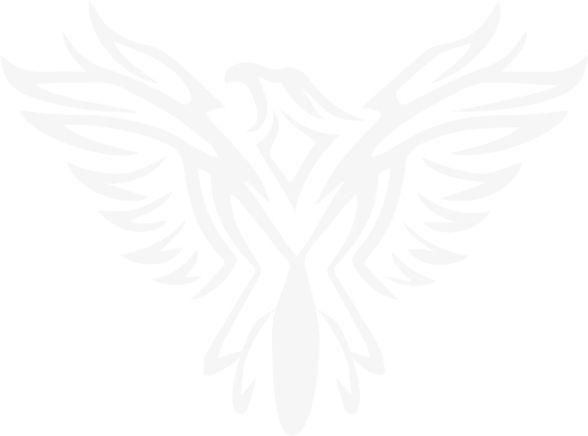 Carfix Distribuidora