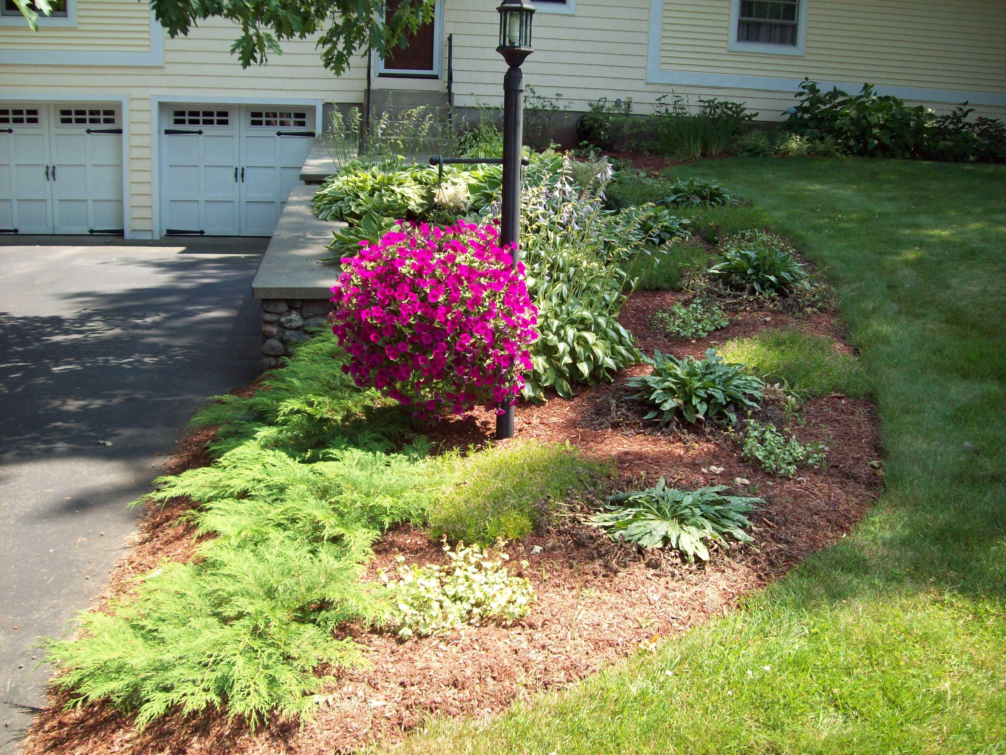 Front Yard Shade Garden
