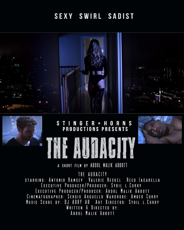 Audacity poster 2.jpeg