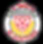 bdsfa logo.png