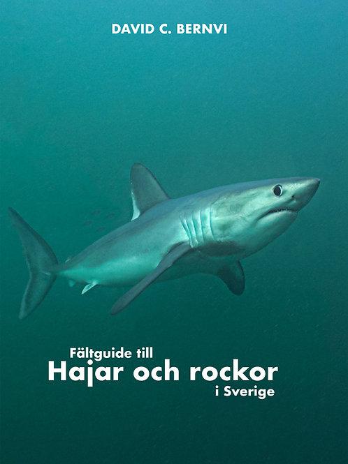 Fältguide till hajar och rockor i Sverige