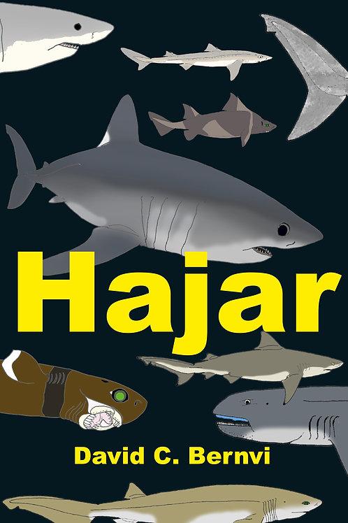 Hajar: en spännande faktabok