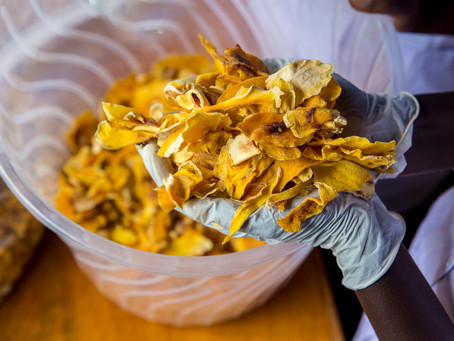 Transforming Food Waste Into Opportunity