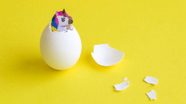 Upcycled_Food_Unicorn.jpg