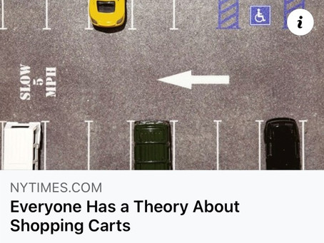Shopping Cart Theory article mentioned in the NY Times