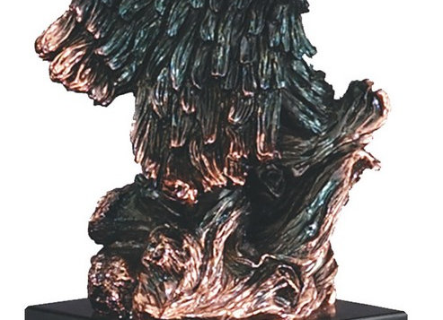 American Eagle Series Bronze Head