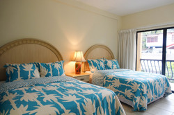 Chaconia Superior Twin Double Room