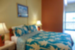 Chaconia Standard Double Room.jpg