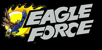 Eagle forece logo2.png