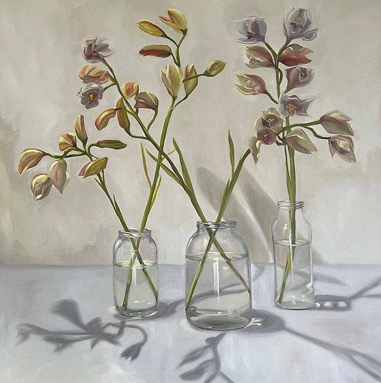 Still Life - Nonna's Orchids