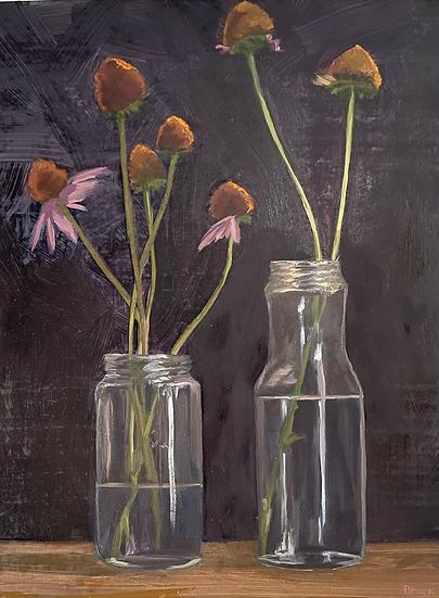 Still Life - Echinacea in Glass Jars