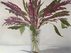 Still Life - Amaranthus in Glass Vase (private collection)