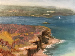 Manly Ferry and Crater Cove (private collection)