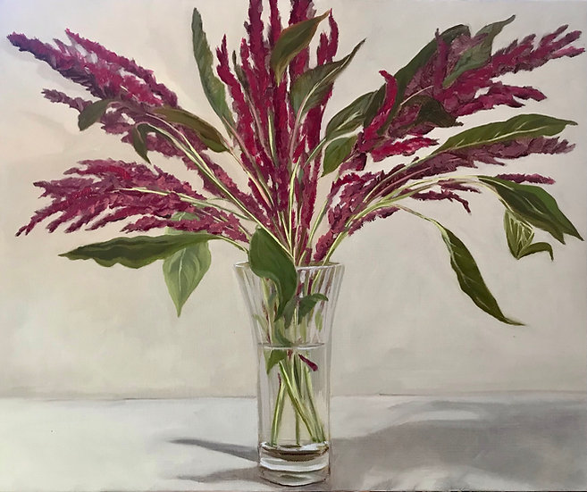 Still Life - Amaranthus in Glass Vase