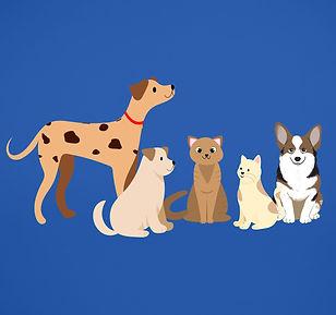 QE_Animals_Main.jpg
