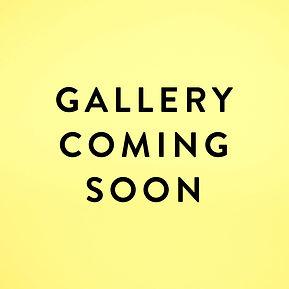 GalleryComingSoon.jpg