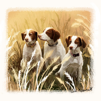 dogs in wheat portrait.jpg