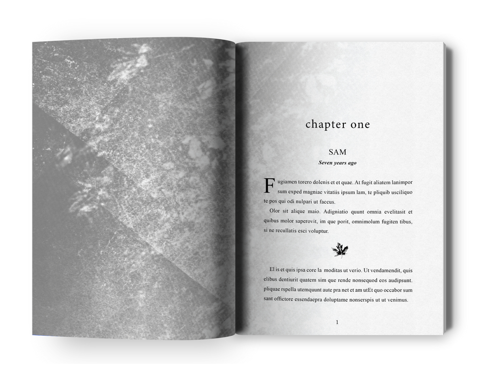 open-book-mockup-Site-TFTOS.png