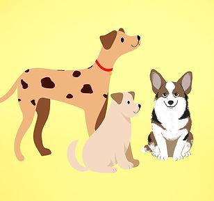 QE_Animals_Dogs.jpg