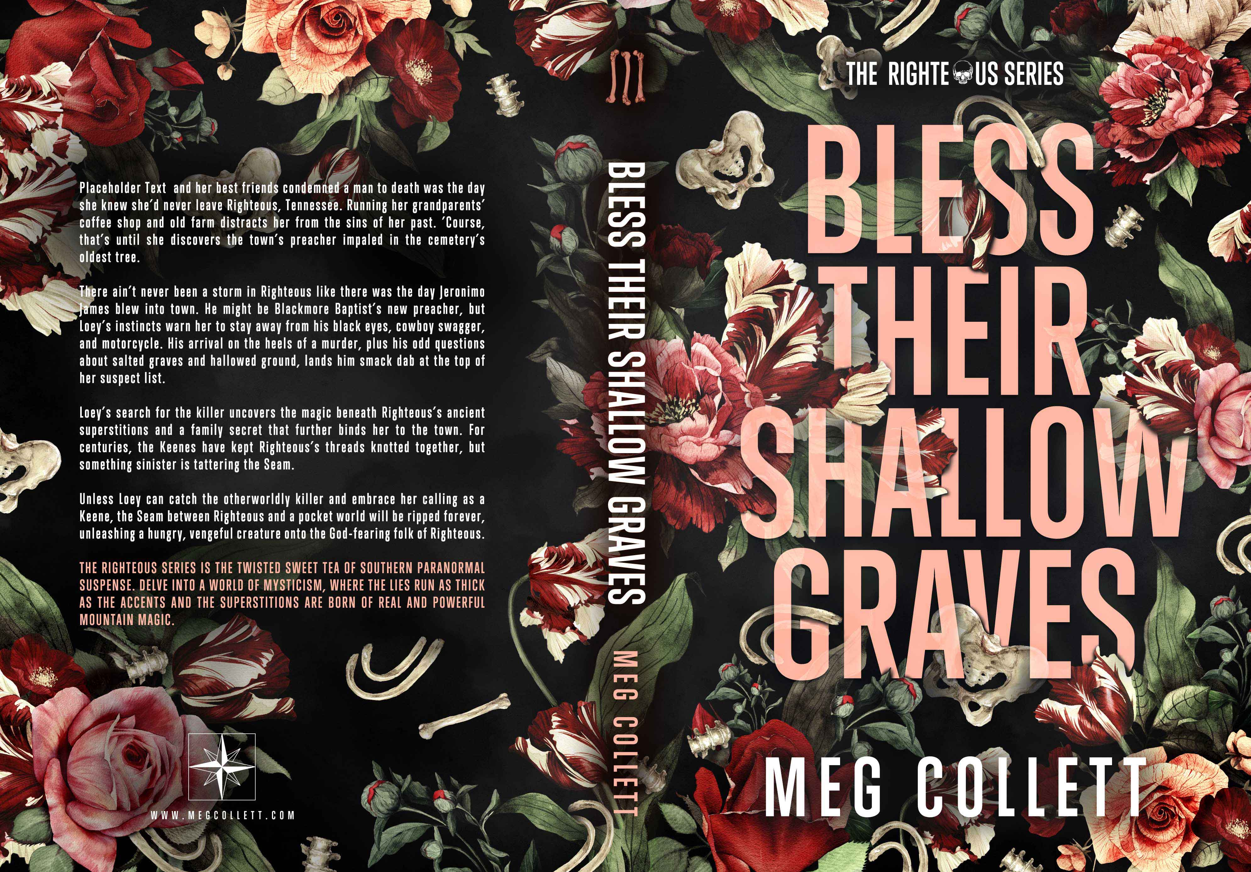 BlessTheirShallowGraves6x9_450.v7_WEB
