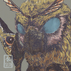 08 - Mothra.jpg