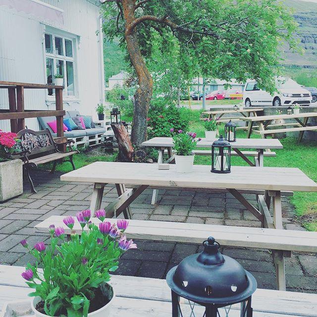 We miss summer😍 #sun #eastfjords #iceland