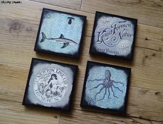 NEW: Underwater Creatures coasters