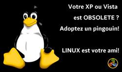 XP Vista