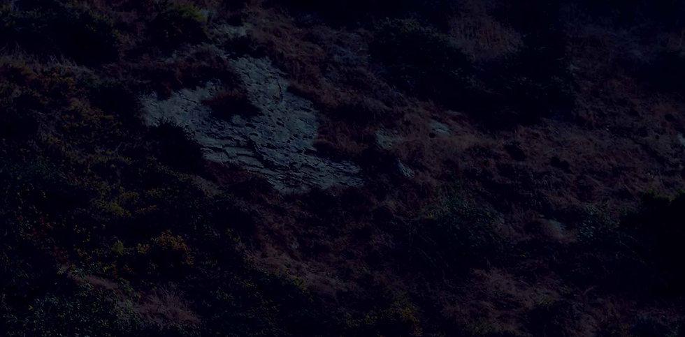 bg-4-hill-A.jpg
