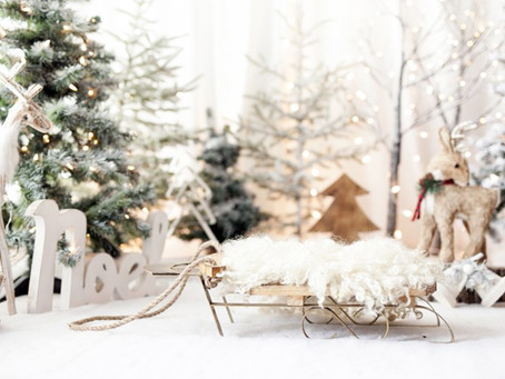 NOW BOOKING CHRISTMAS MINI SESSIONS!!