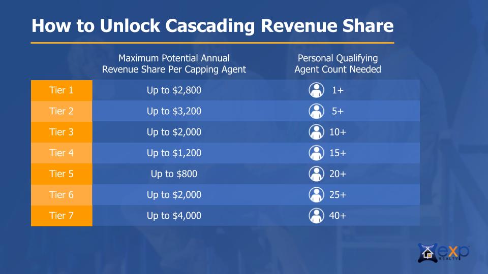 RevenueShare3.png
