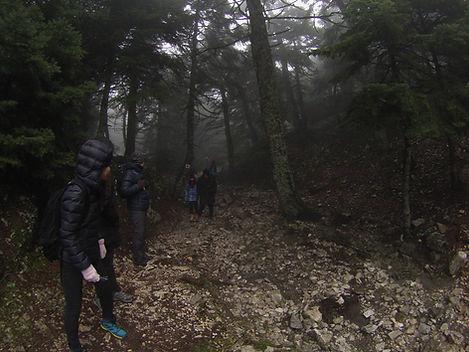 Athens Hiking