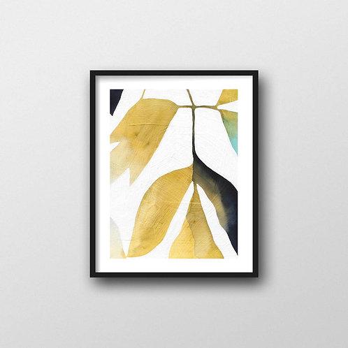 Tree Peony Art Print